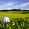 Whiley Golf Ltd.